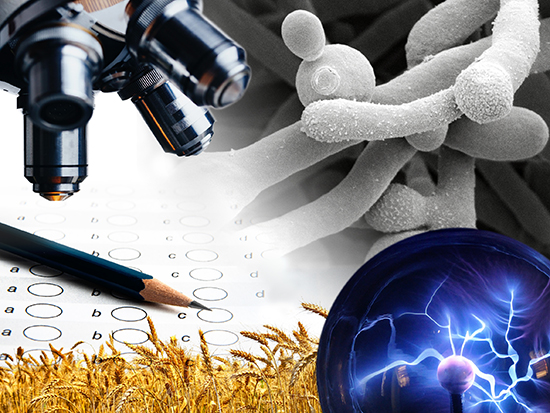 Description: 1. 2018 SaRCHi read more Tags: : zoonotic viruses, fungal infections, phosphor materials, Department of Physics, Prof Maryke Labuschagne, Prof Felicity Burt,  Medical Microbiology and Virology, Prof Carlien Pohl-Albertyn, Department of Microbial, Biochemical and Food Biotechnology